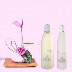 Luxury Gift Set Abeauty Pulchra Complete Treatment Firming Treatment