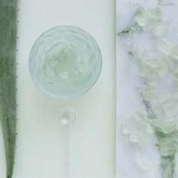 Why should we use aloe vera gel?